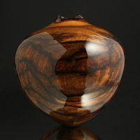 Ultra Gloss Spalted Persimmon Hollow
