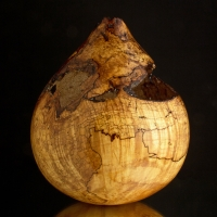 Ultra Gloss Teardrop Spalted Maple Burl Hollow