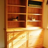 Built in Bookcase <br/>Bald Cypress