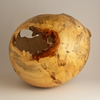 Spalted Natural Off Balance Maple Hollow - SOLD