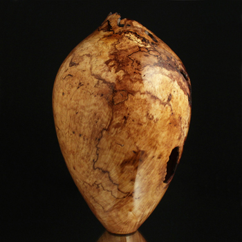Spalted Red Maple Burl Ultra Gloss Hollow Form