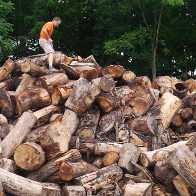 scavanged wood turning blanks